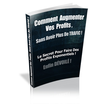 comment augmenter vos profits